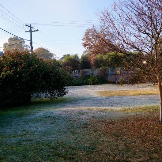 Frost at 07:00 today: a clear, cold, Canberra winter morning