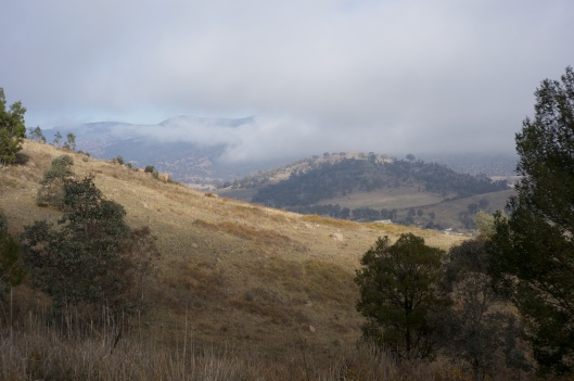 The Tuggeranong valley in mist